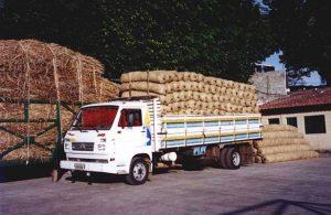 transporte de bermalonga
